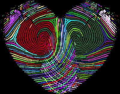 Analisi biometrica delle impronte digitali